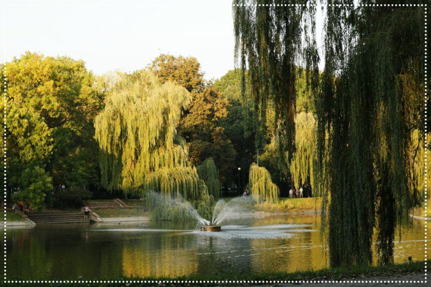 Park Morskie Oko w Warszawie