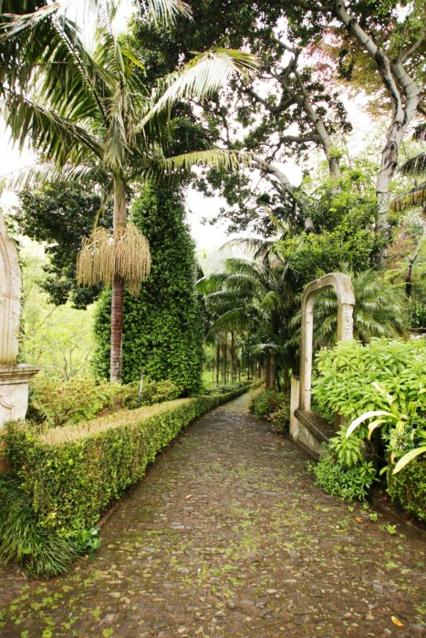 Jardim tropical garden monte palace funchal