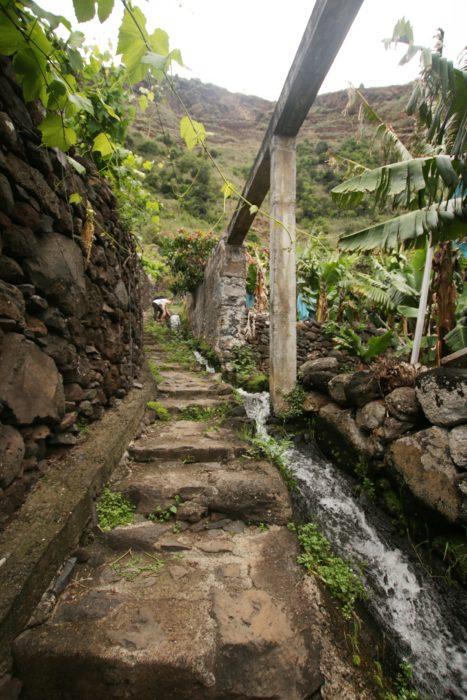 Wejście na szlak w Jardim do Mar