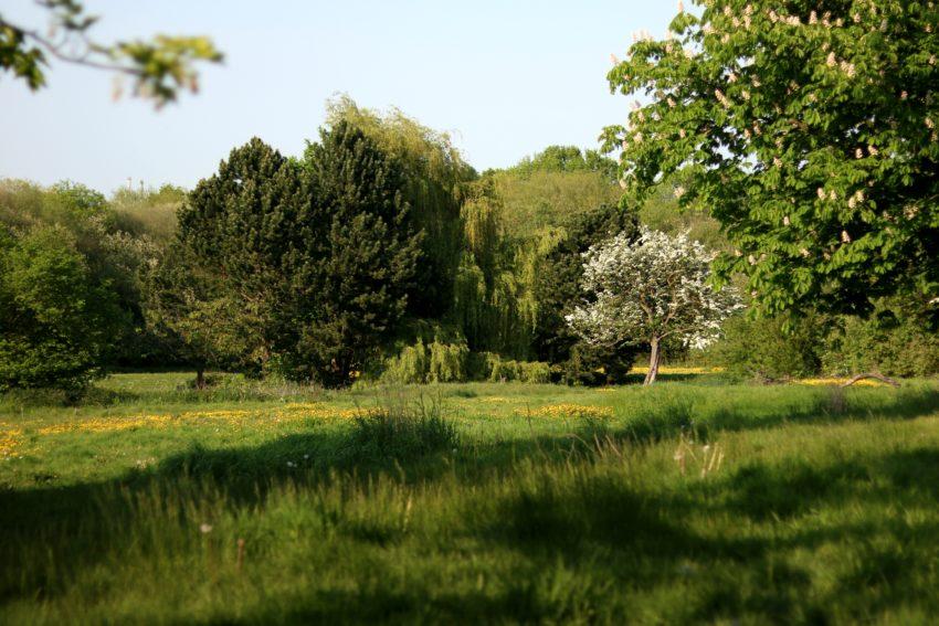 hemsworth water park and playground