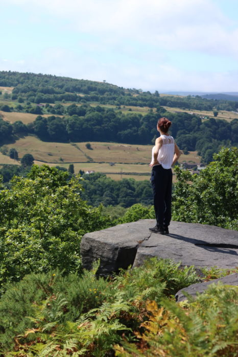 wharncliffe nature reserve