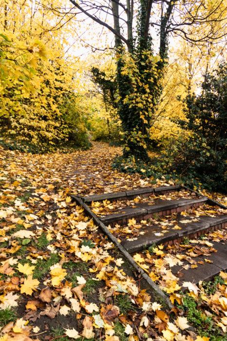 jesień w anglii