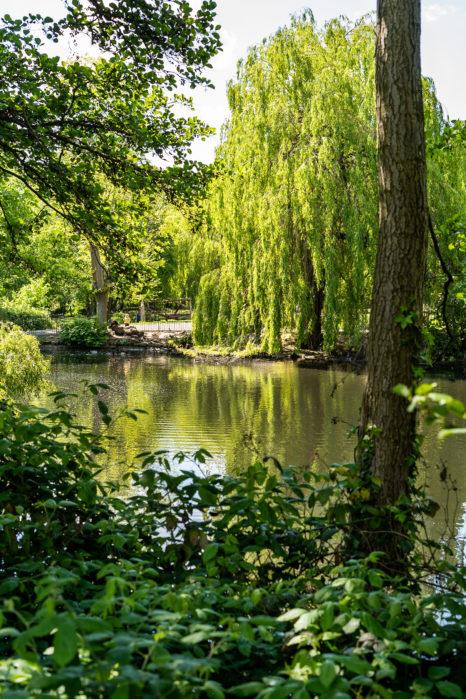 Park Waterloo