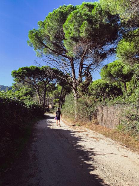 Droga prowadzącą na Santa Margherita di Pula